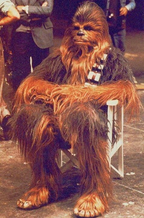 Chewbacca takes a break, 1976  Technically he's not a person, but wookie or not, I Like him ah lot.