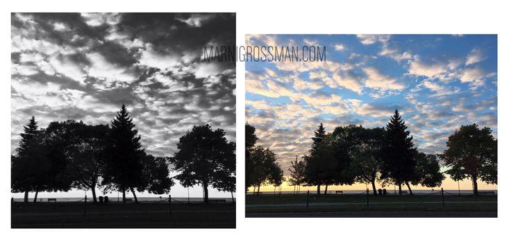 #marnigrossman #marnigrossmanphotography #marnigrossmantoronto