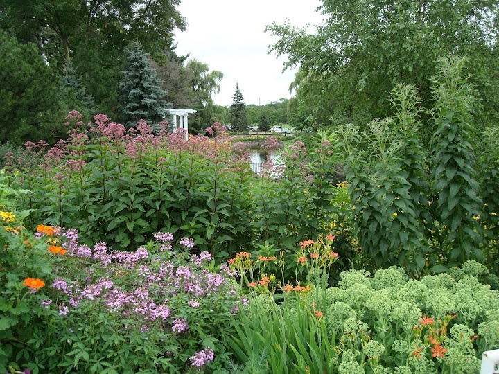 70 best Photo spots in Twin Cities area images on Pinterest   Senior ...