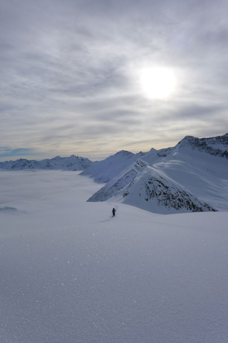 Backcountry skiing near campbell icefields
