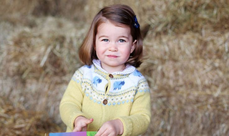 PRINCESS Charlotte's second birthday celebrations have kicked off with an official photograph of the toddler released by Kensington Palace.