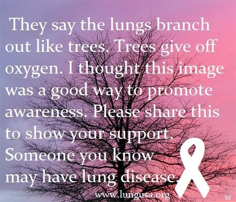 Support/fight lung disease. It strikes all ages.  www.facebook.com/groups/autoimmuneangels