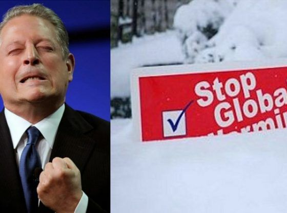 Image result for al gore a liar