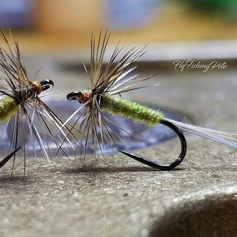 Couple of size 18 mayflies. #flyfishing #flytying #flytyingaddict #flytyingjunkie #fluebinding #flugbindning #dryfly #dryordie #troutfood #mayfly #troutfishing #tyingflies #whitingfarms #mayflymafia #barbless #moonlitflyfishinghooks #torrfluga