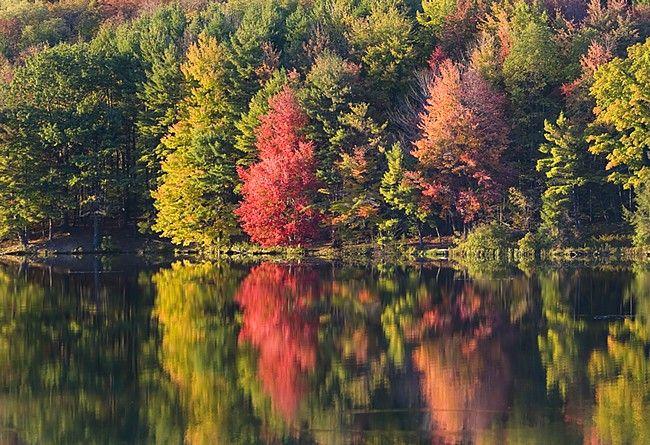 Tioga County PA Scenery | Hills Creek Lake - Pennsylvania