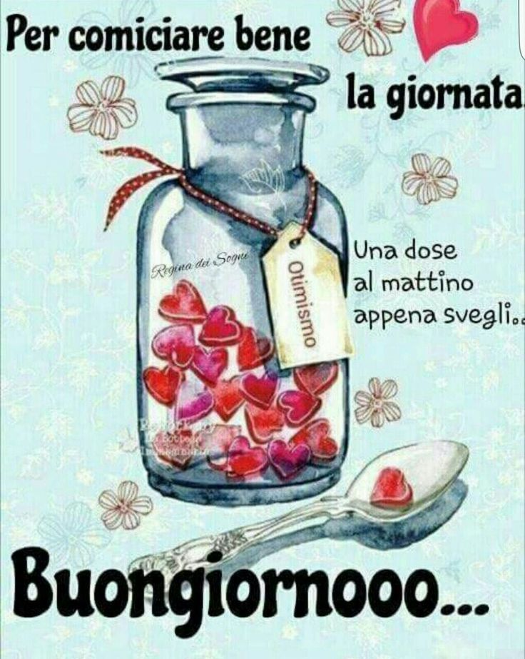 552 best images about buondi on pinterest terry o for Buongiorno sms divertenti