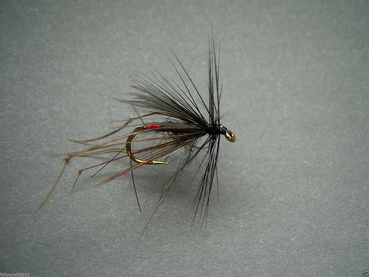 Red Tipped CDC Black Hopper Fly, Dry Trout Fly! | eBay