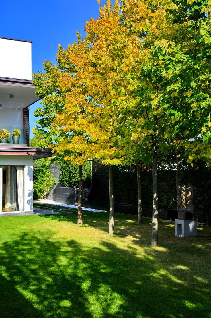 #Urban #Sculpture #Garden in #Ljubljana, #Slovenia. Pure, #abstract forms of this garden articulate a #dialogue with the #modern #architecture of the #house. // #Mestni #vrt #skulptur v Ljubljani. Čiste #forme #vrta sledijo in dopolnjujejo #sodobno #arhitekturo #mestne #vile. / #design: #Landscape d.o.o. / www.landscape.si / FB Landscape Slovenia /