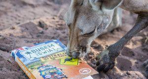 """Książka """"Busem Przez Świat. Australia za 8 dolarów"""". Do kupienia z autografem tutaj: http://www.sklepzpodrozy.pl/?product_cat=ksiazki&_ga=1.113862983.1763909837.1450112991"""