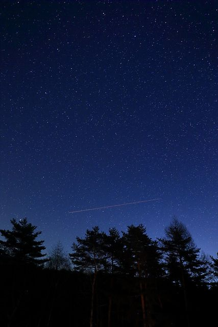 Stardust on Flickr.