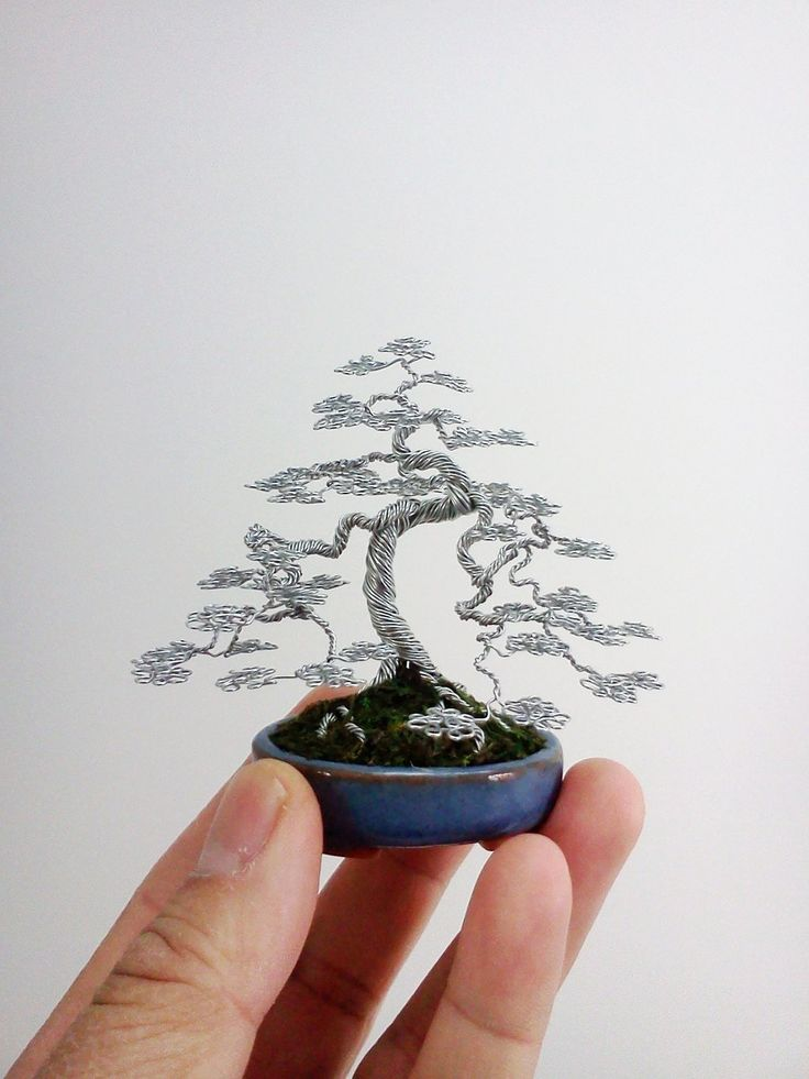 Wire Bonsai Tree sculpture by Ken To by KenToArt.deviantart.com on @deviantART