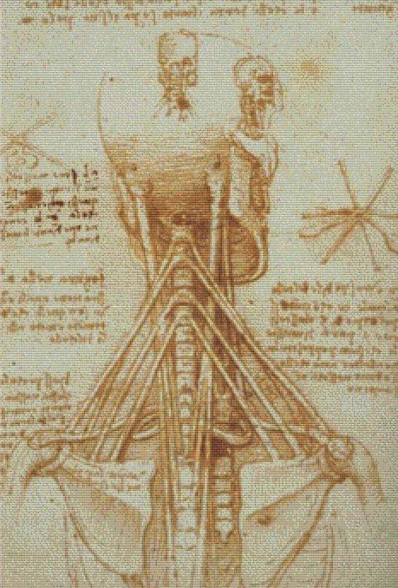 Anatomy of the Neck PDF Cross Stitch by XSquaredCrossStitch