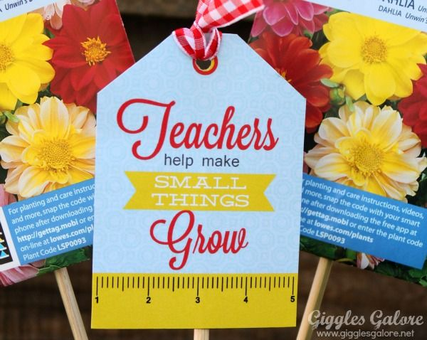 Teachers Help Small Things Grow {Teacher Appreciation Gifts} - Giggles Galore