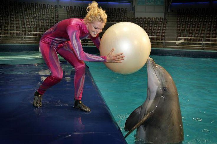 dolfijnentrainer