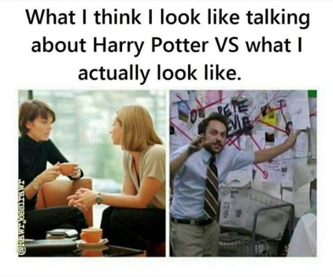 lol literally had a long discussion about Harry Potter today in school. Guess who is teacher's pet and doesn't get in trouble for talking about books in classes that aren't ELAR?