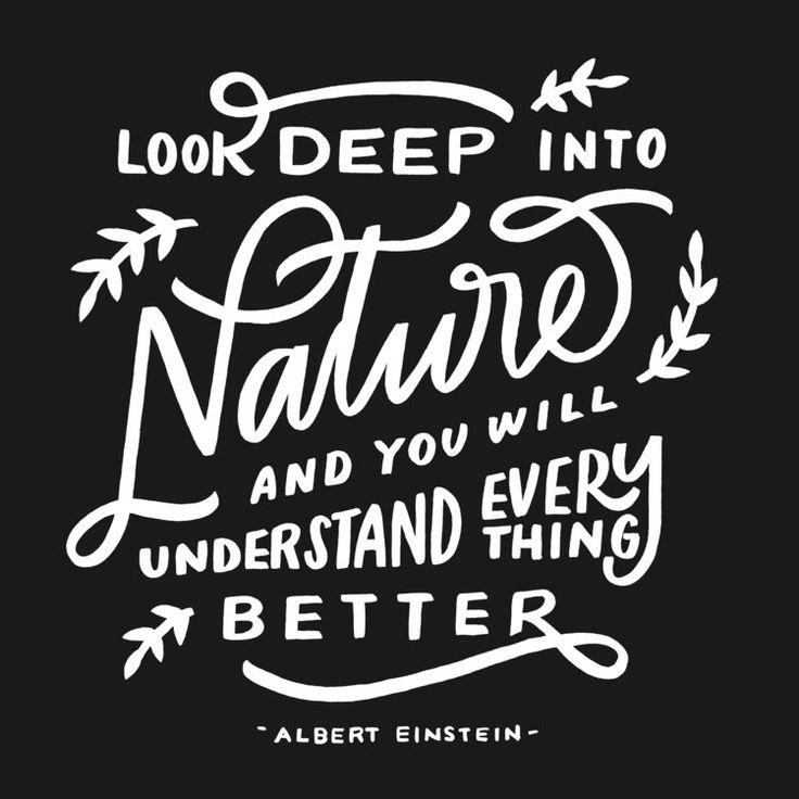 naturequote.jpg