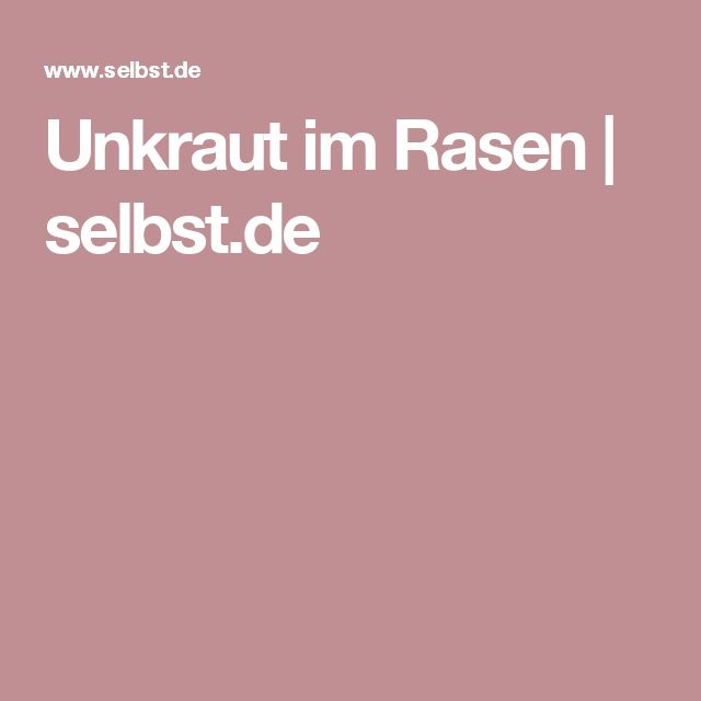 25+ beste ideeën over Unkraut im rasen op Pinterest - Rasenunkraut - unkraut im rasen