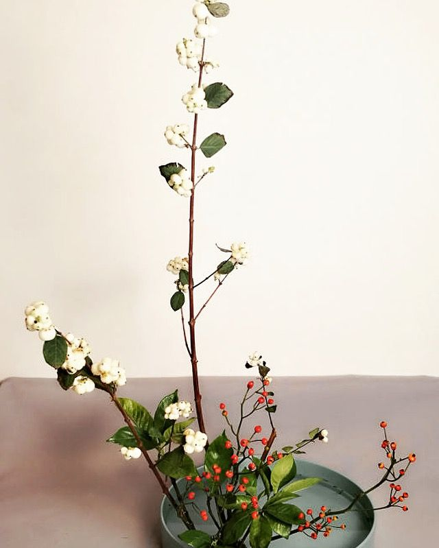 #ikebana #いけばな  a preview of winter. The work of this week by woshiannie