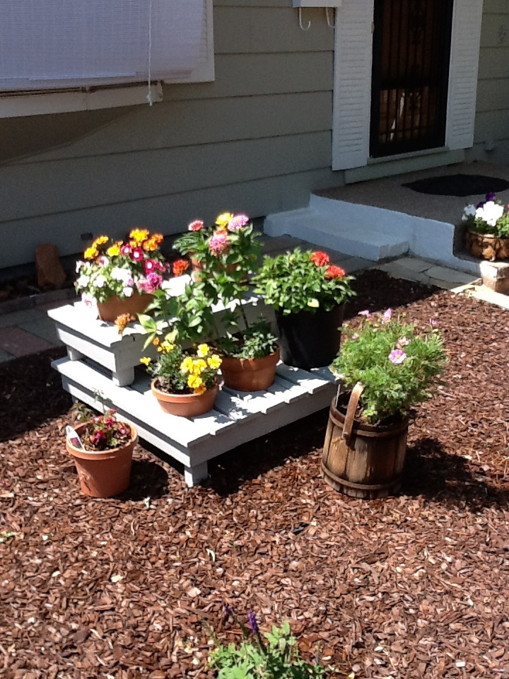 I made this flower stand from two pallets. I cut one in half to set on top of a full pallet. Cut the holes so that the pots would set in. Two large holes for the top pallet and three smaller holes for the bottom pallet. And then painted it. You could even make the planter longer or taller. Fun project to do with little money!