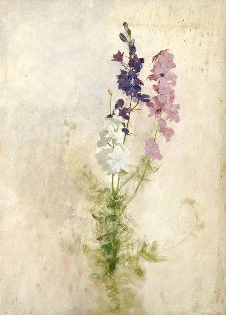 wasbella102:    Benjamin Haughton: Cluster of flowers