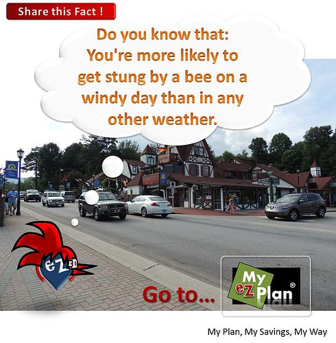 """""""Fascinating Fact 