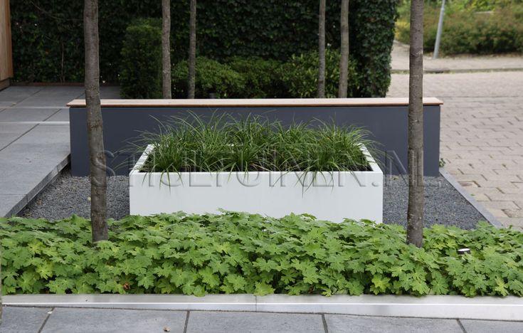 Tuinontwerp luxe wellnesstuin met bubbelbad en buitendouche in NieuwerkerkTuinontwerp en tuindesign STIJLTUINEN   Exclusieve, luxe en moderne tuinen