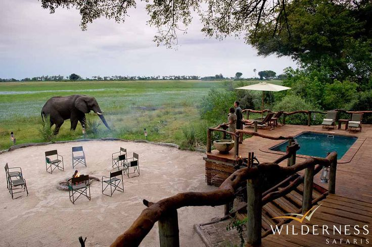 Tubu Tree Camp - Tubu Tree Camp is located in the Jao Concession: 60,000 hectares of reserve against the western boundary of the Moremi Game Reserve in the north-western area of the Okavango Delta, Botswana, below the Panhandle. #Safari #Africa #Botswana #WildernessSafaris
