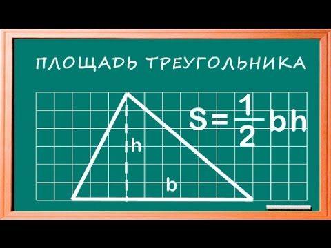 Площадь треугольника . Знания по математике