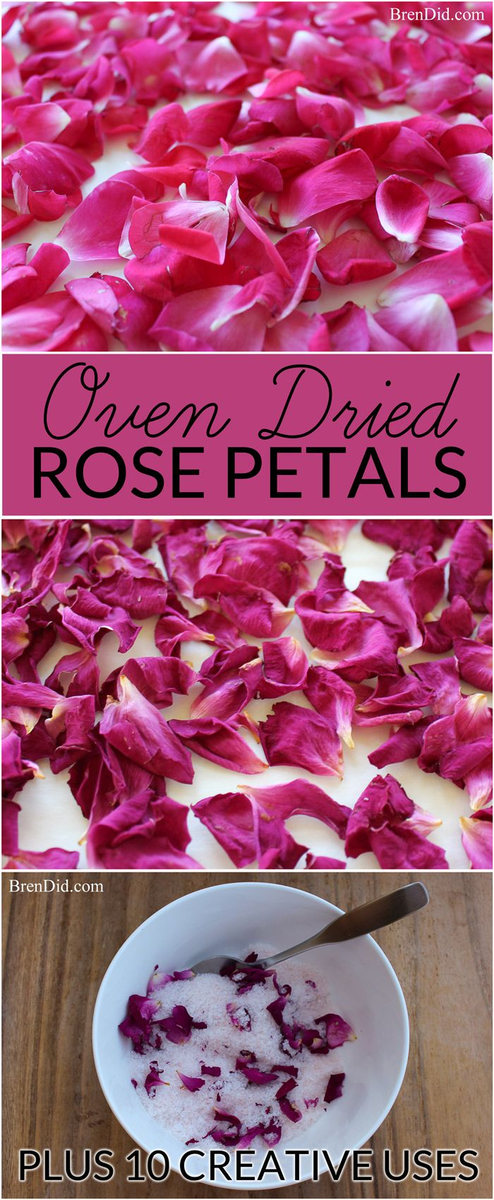 How to oven dry rose petals