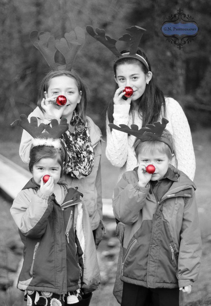 Kerstfoto! Rendieren met rode neus.