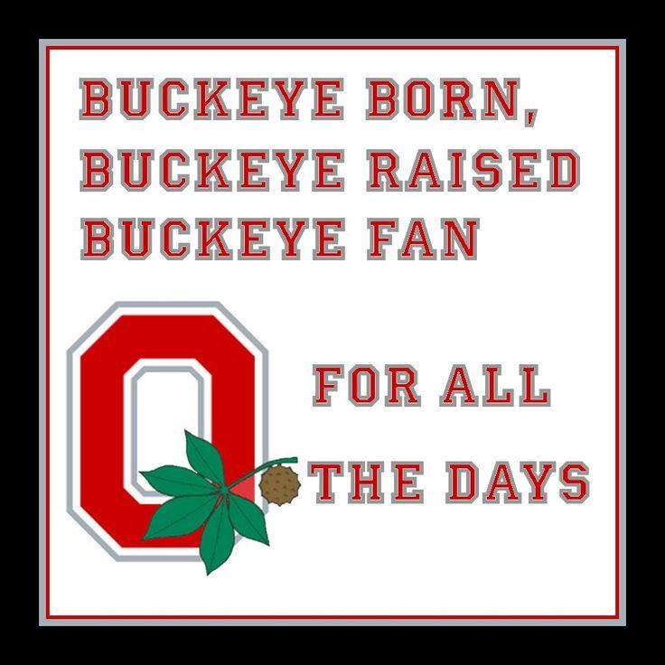 Fan Art of Buckeye Born  for fans of Ohio State Football. Buckeye Born 940x940
