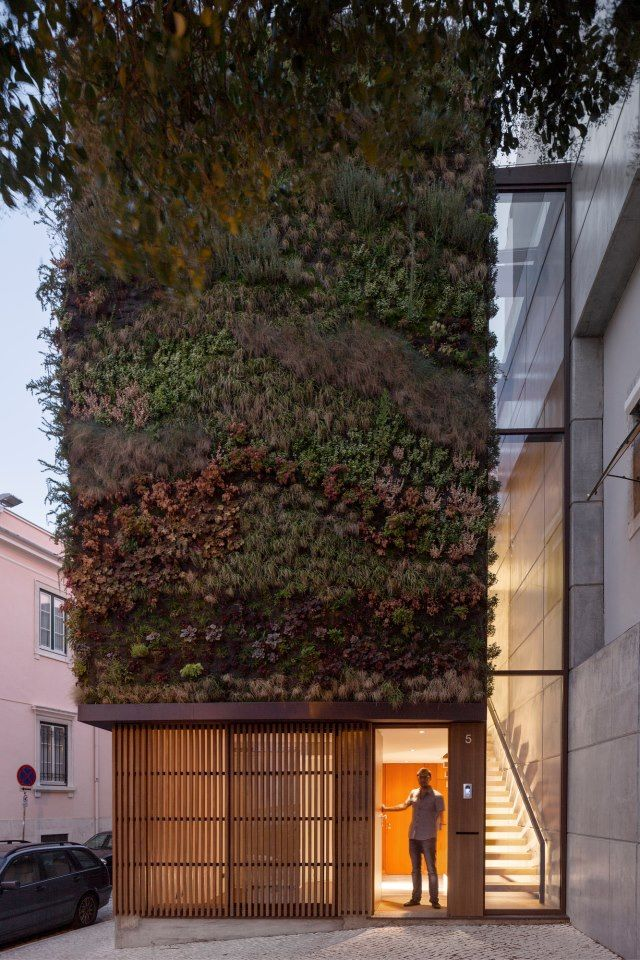 green wall_ House in Lisbon, Portugal