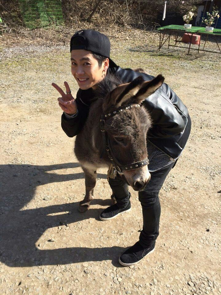 Got7 Jackson with Michael the Donkey kk -xlodv | Got 7 ...