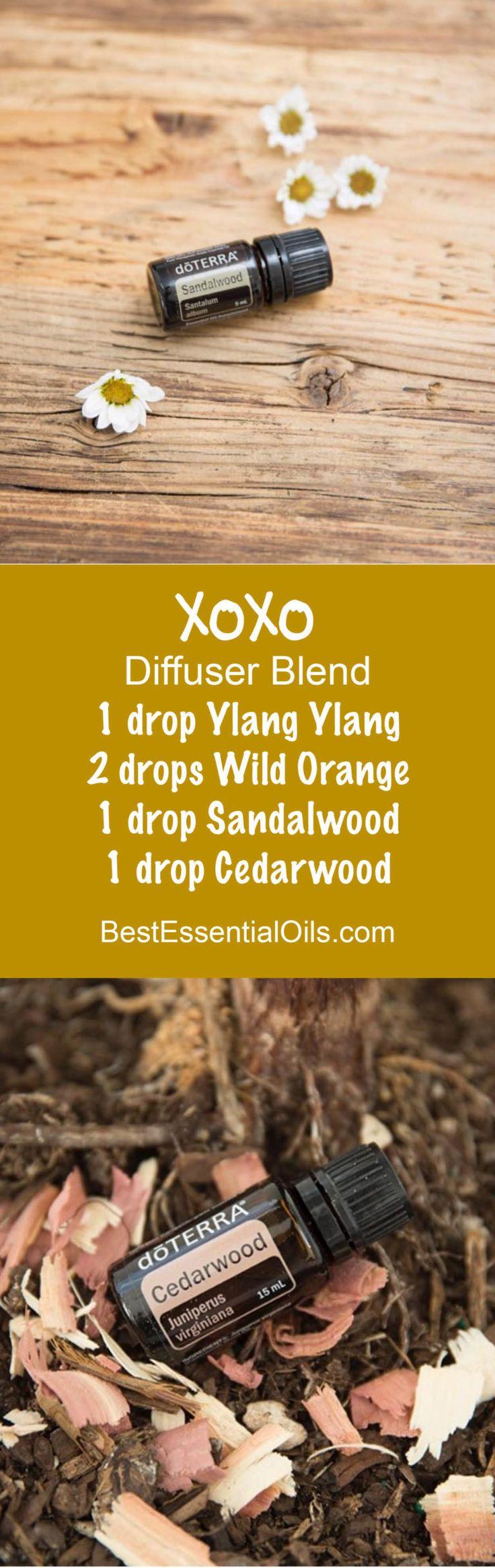 doTERRA Essential Oils XOXO Diffuser Blend