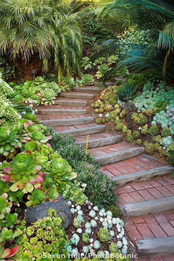 426 best garden paths images on pinterest garden ideas for Step up garden designs