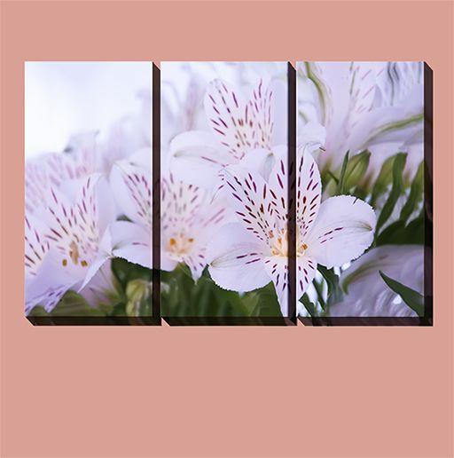 White flowers, 3 equal pieces multicanvas. #multicanvas