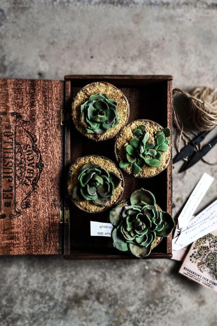 SUCCULENT CUPCAKES #CupcakesOriginales #CupcakesParaSorprender #tutorial