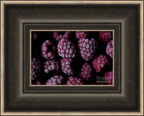 Frozen Framed Print featuring the photograph Frozen Raspberries by Sverre…