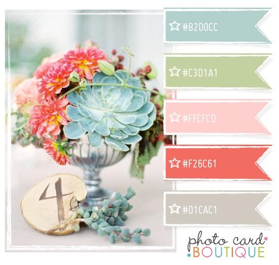 Color Crush Palette · 5.29.2012Colors Combos, Pretty Colors, Colors Crushes, Colors Palettes, Colors Schemes, Crushes Palettes, Photos Cards, Colours Palettes, Cards Boutiques