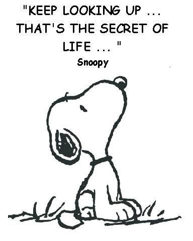keep looking up thats the secret of life - snoopy
