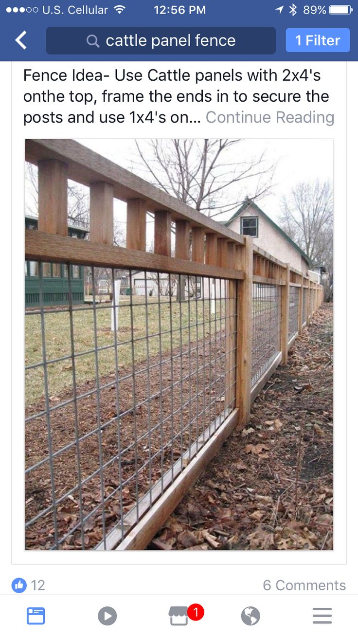 Cattle panel fence house pinterest cattle panels cattle cattle panel fence house pinterest cattle panels cattle panel fence and house baanklon Choice Image