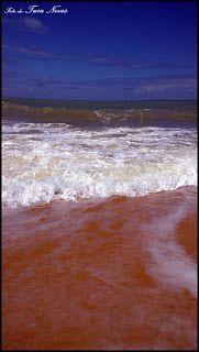 Tuca Neves: Praias do Parracho, Pitinga e Taípe/Arraial D'ajuda/Porto Seguro/BA