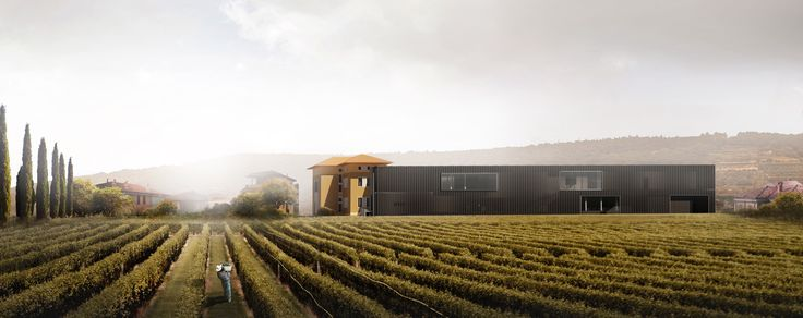 Visual for the Wine Center competition. Author: Denys Kozak.  https://www.behance.net/densky
