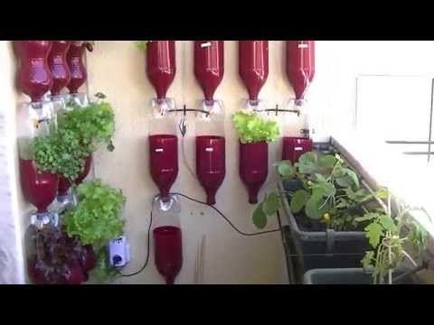 Horta Vertical em Garrafa Pet, passo a passo - YouTube
