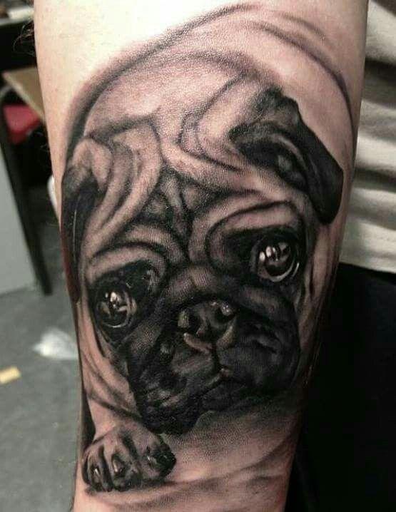 86 best pug tattoos images on pinterest pug tattoo pug and pug dogs. Black Bedroom Furniture Sets. Home Design Ideas