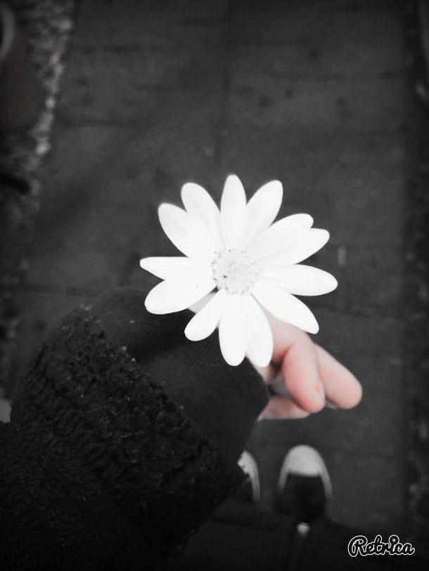 Aesthetic Black And White Flower Girl Goth Image 4012026 By Tschissl On Favim Com Pinterest Ca Black And White Aesthetic Black Aesthetic White Aesthetic