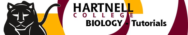 Hartnell College Computer Science and Information Technology Biology Tutorials