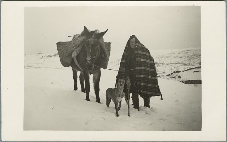 [Hombre cubierto por una manta a cuadros con un bastón, un perro y un burro con serón en un monte nevado] (s.a.) - Anónimo