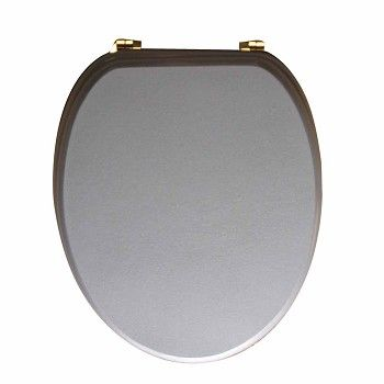 #Toilet #Seat Silver Adjustable Elongated Brass PVD Hinge # 17098 Shop --> http://www.rensup.com/Toilet-Seats/17098.htm