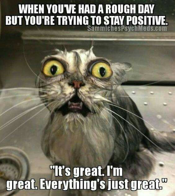 """When you've had a rough day but you're trying to stay positive. """"It's great. I'm great. Everything's just great."""""""